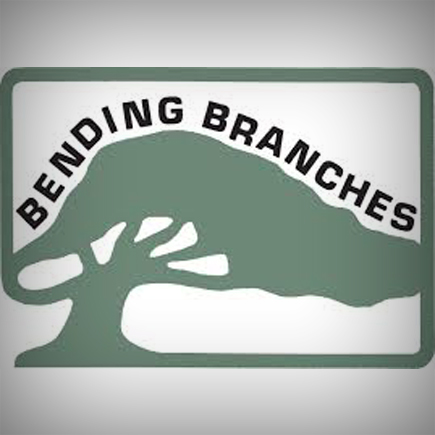Bending Branches AMP SUP Paddle