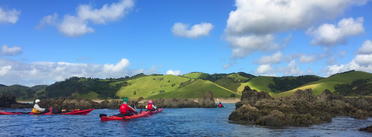 New Zealand, Bay of Islands Paddling Wrap Up